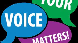 survey graphic your voice matters